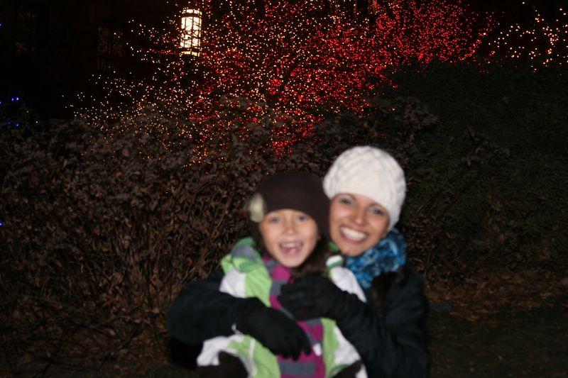 Christmas 2011 lights 075