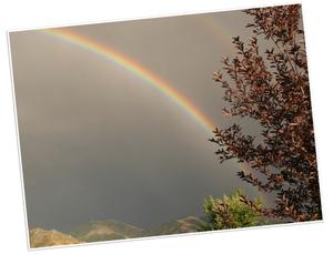 Rainbow2_2